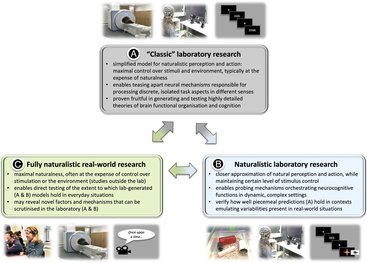 Are We Ready for Real-world Neuroscience? Very instructive overview and discussion on naturalistic stimulation and related topics by https://buff.ly/2C9uf1g, @SuzanneDikker, @c_perrodin and @paweljmatusz. The brain did not evolve for the lab setting   https://buff.ly/2VFgFtY