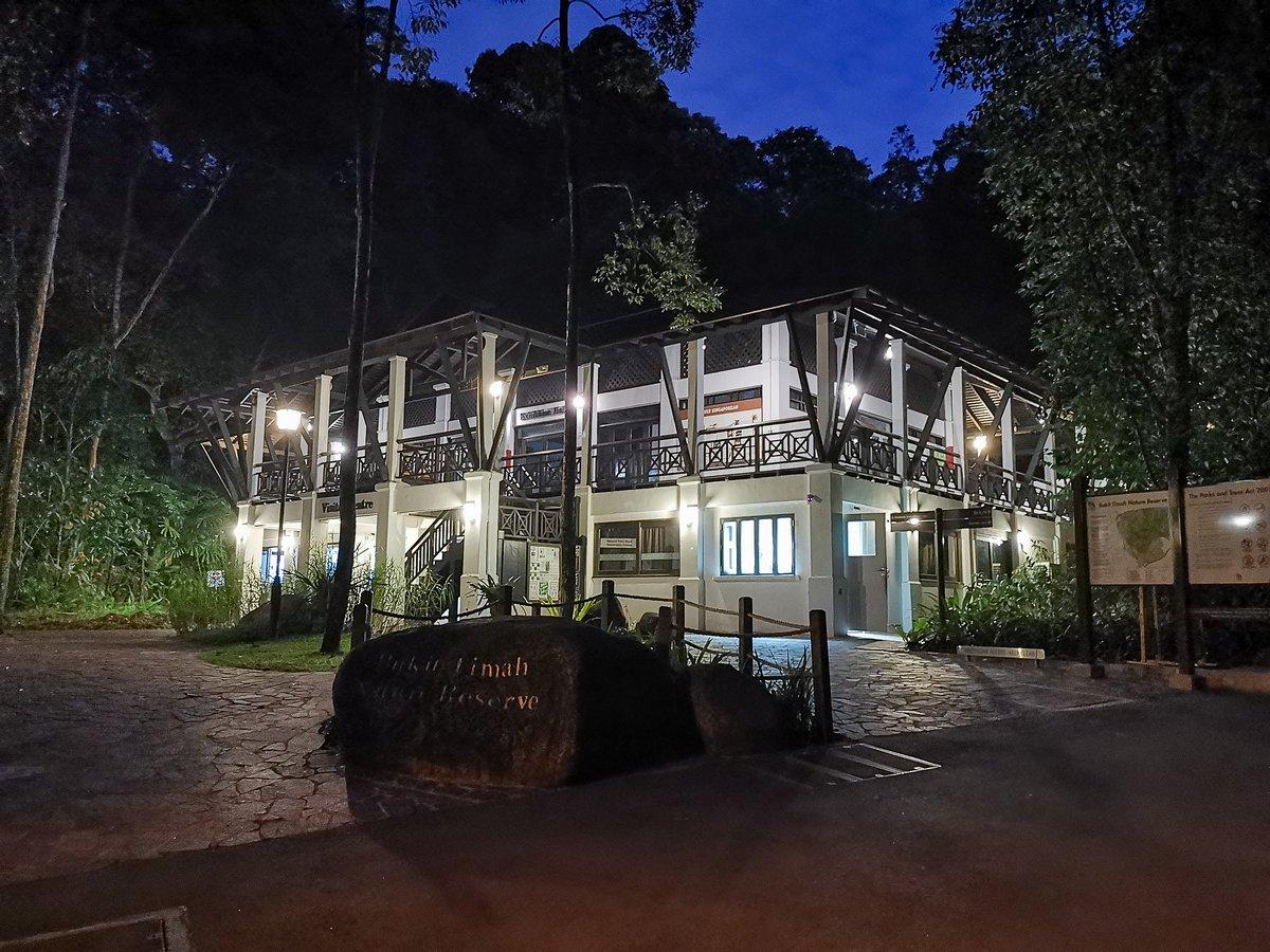 Bukit Timah | 28 Feb 2019 #TrailRunningSG #TrailsSG #ILoveTrailRunning #BeatYesterday