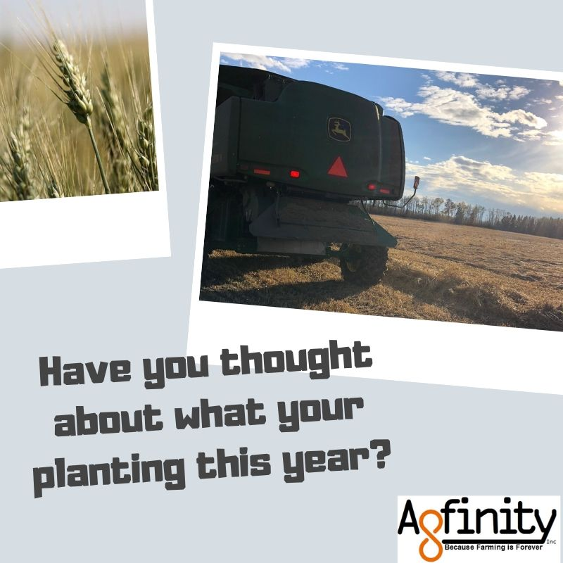 Planting season is almost upon us have you given much thought about what you are going to plant this year? #crop19 <br>http://pic.twitter.com/GAftLIiuRr