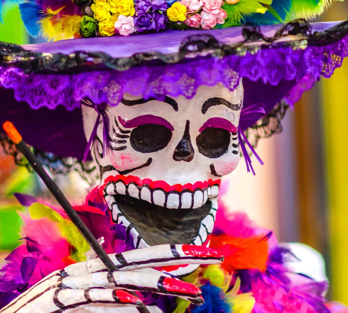 Fancy spending your holiday with this lively fellow? Mexico is just one of five top places we think everyone should experience in their lifetime. Read on for four more - https://t.co/Qm3uiYN2MO #holidays #holidayswithadifference #somewheredifferent https://t.co/PCGgBA2J1e