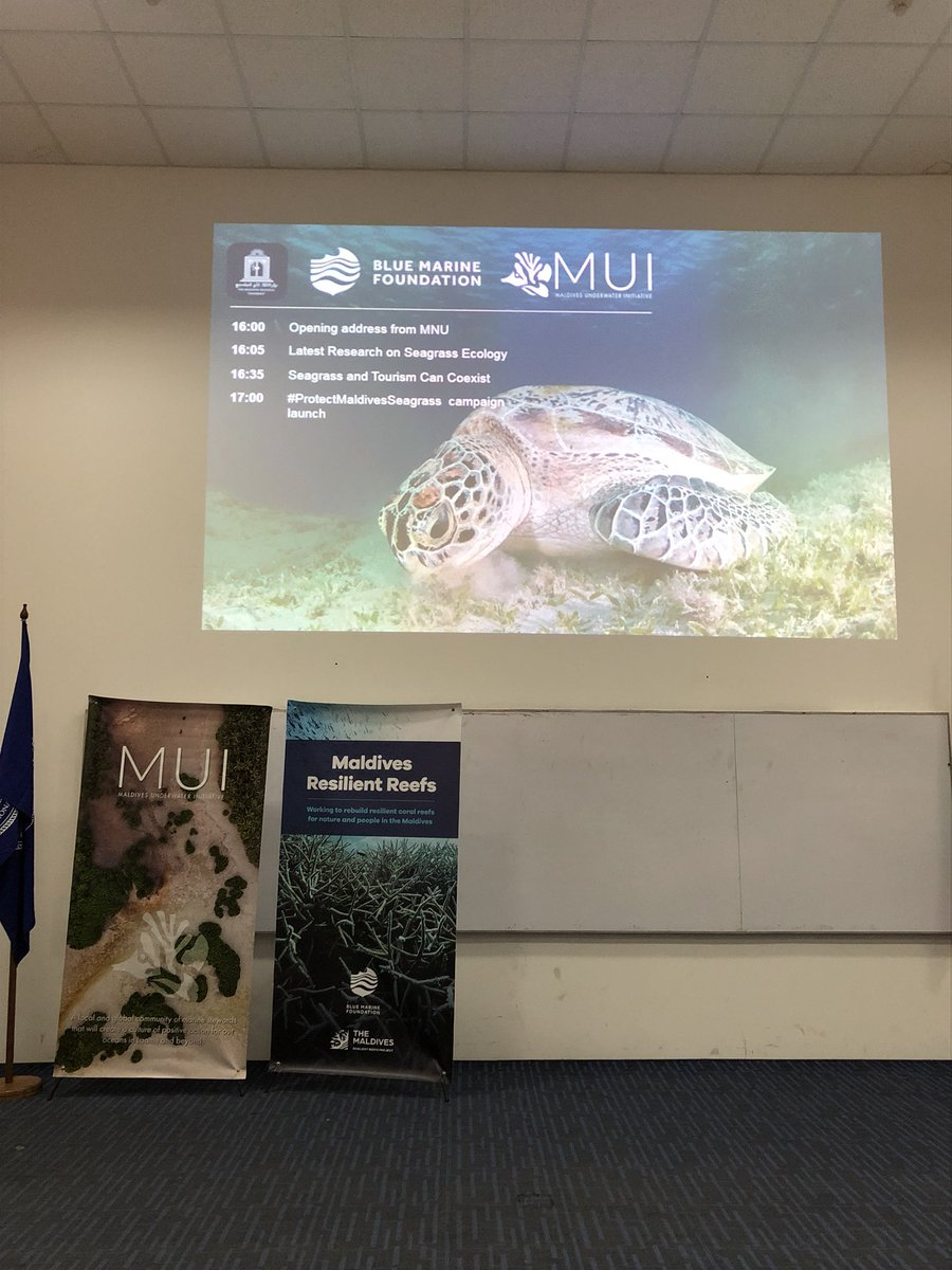 Yesterday evening I attended a seminar on Seagrass. I realized that seagrass is as important as corals and mangroves for our sustenance and environmental protection. We have more reasons than ever to celebrate World Seagrass Day.