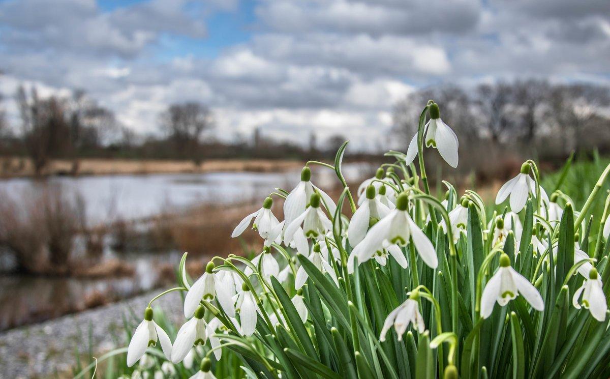 Тебя, картинки времена года весна