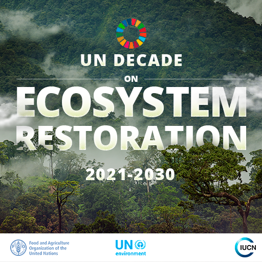 Image result for decade on ecosystem restoration logo