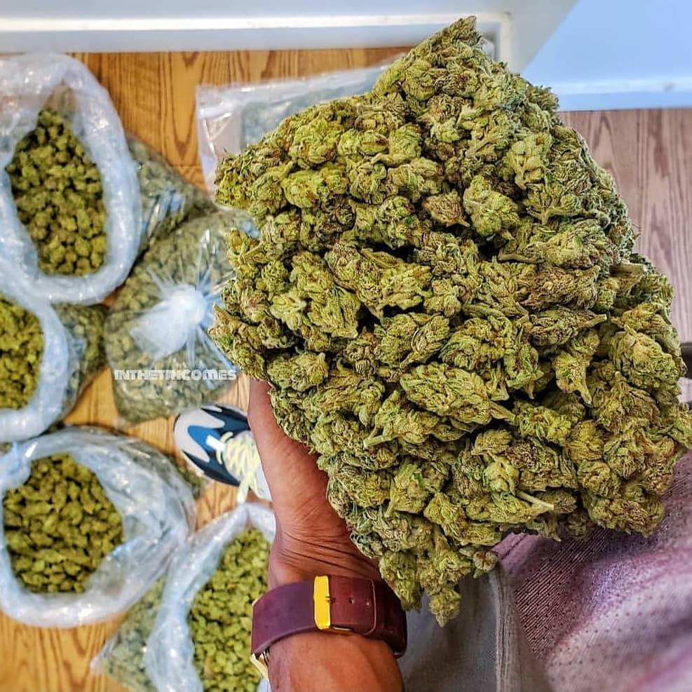 Как определять марихуану по качеству гидропон сорт конопли