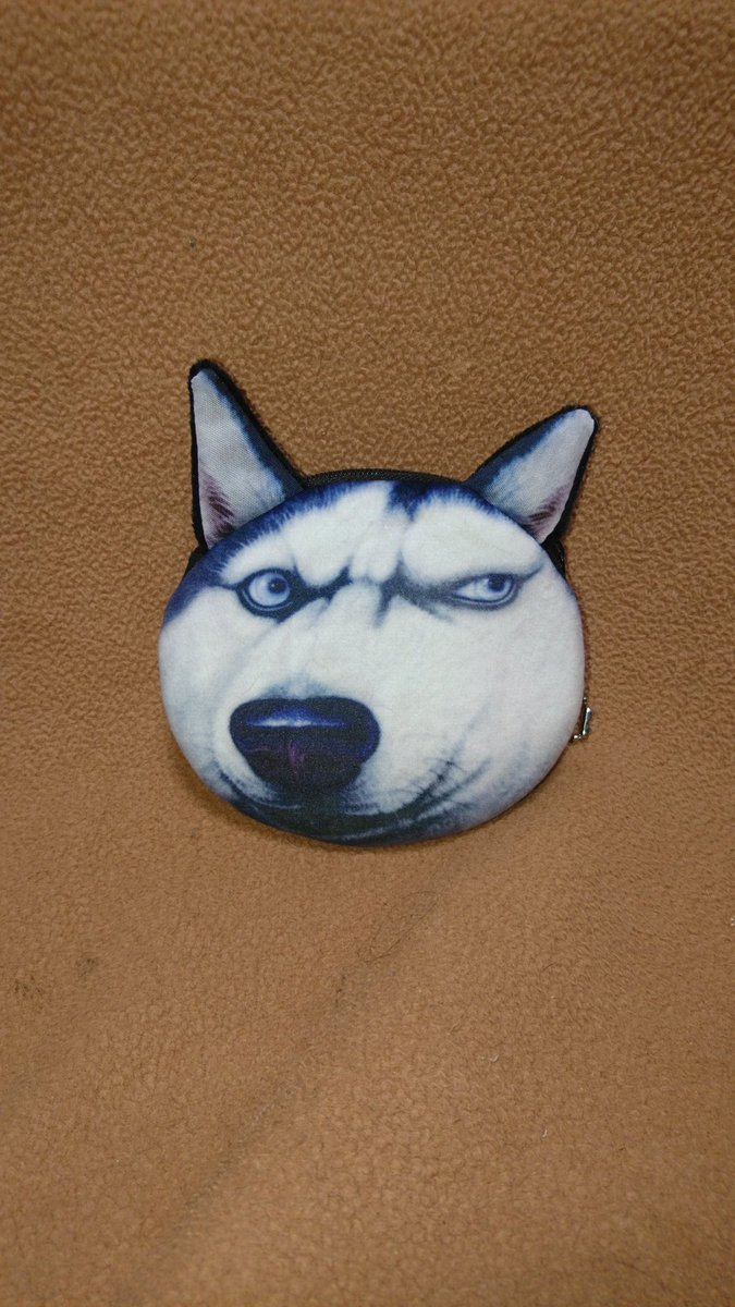 test ツイッターメディア - #シベリアンハスキー   びびびっΣ(•'╻'• ۶)۶✨❤️!! と来た衝動買い✨✨  (*゚∀゚*)ムッハー♪  #ダイソー  #犬   #猫好き #ポーチ  #顔面  #即買い https://t.co/Wnin1rfUqV