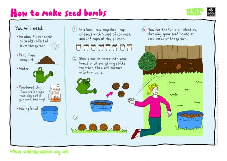 A good family activity for the weekend whilst you are stuck indoors dreaming of warmer weather!   https://www.wildlifetrusts.org/actions/how-make-seed-bomb …  #seedbombs #FlowersOfManchester #meadows #wildflowers #guerillagardening #urbanplanting #flowerbomb #planting #bees #Butterflies
