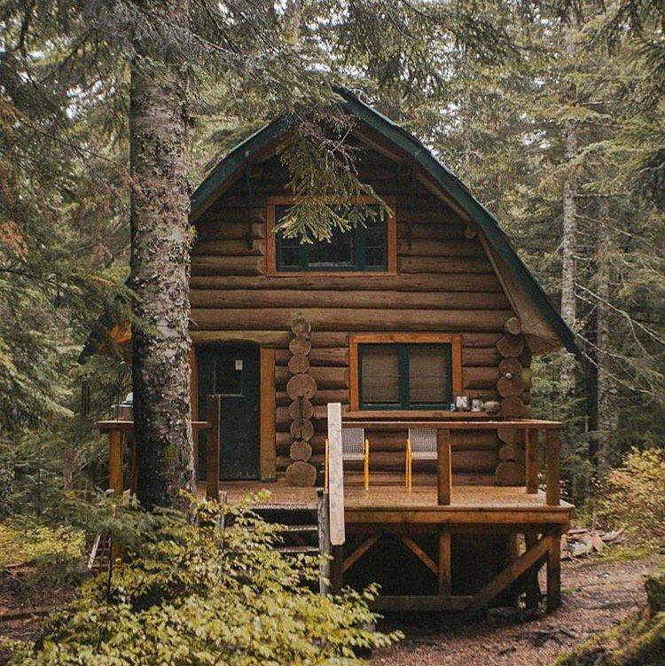 каждая дом в лесу фото и планы портреты
