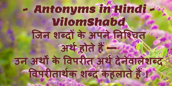 Vilom Shabd in Hindi (Antonyms) विलोम शब्द / विपरीतार्थक शब्द