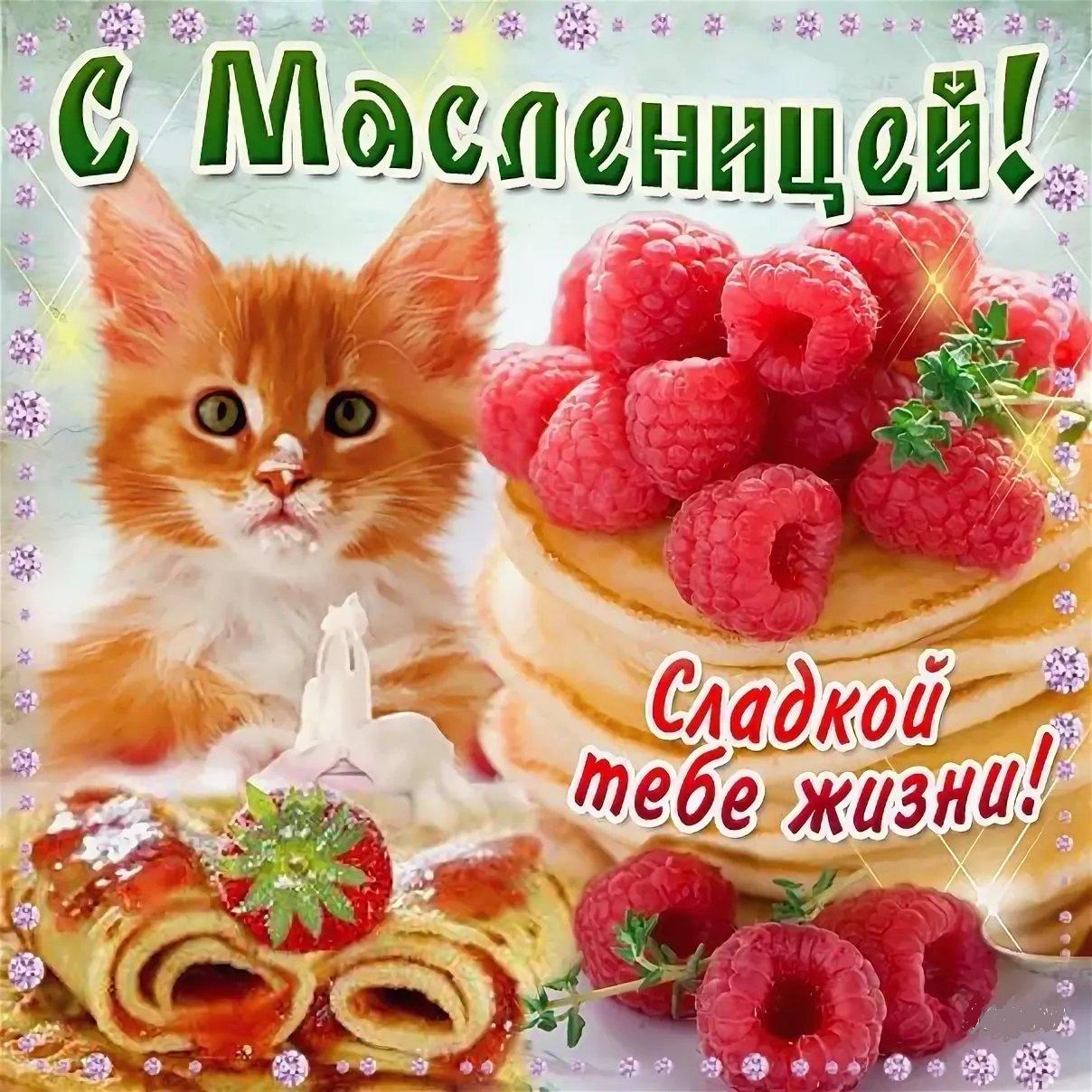 С масленицей поздравления на открытке
