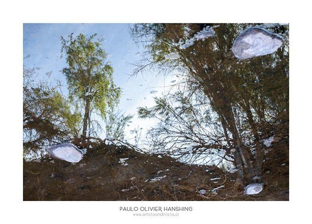 Lo que es arriba es abajo.⠀ Jugando con los reflejos hace un tiempo atrás en algún rincón perdido de la ruta Antakari.⠀ #explore #nature #naturephotography #naturelovers #photographer #photography #photooftheday #instadaily #Fotografia #paisaje #land… https://www.instagram.com/p/BvKp4wahMSf/