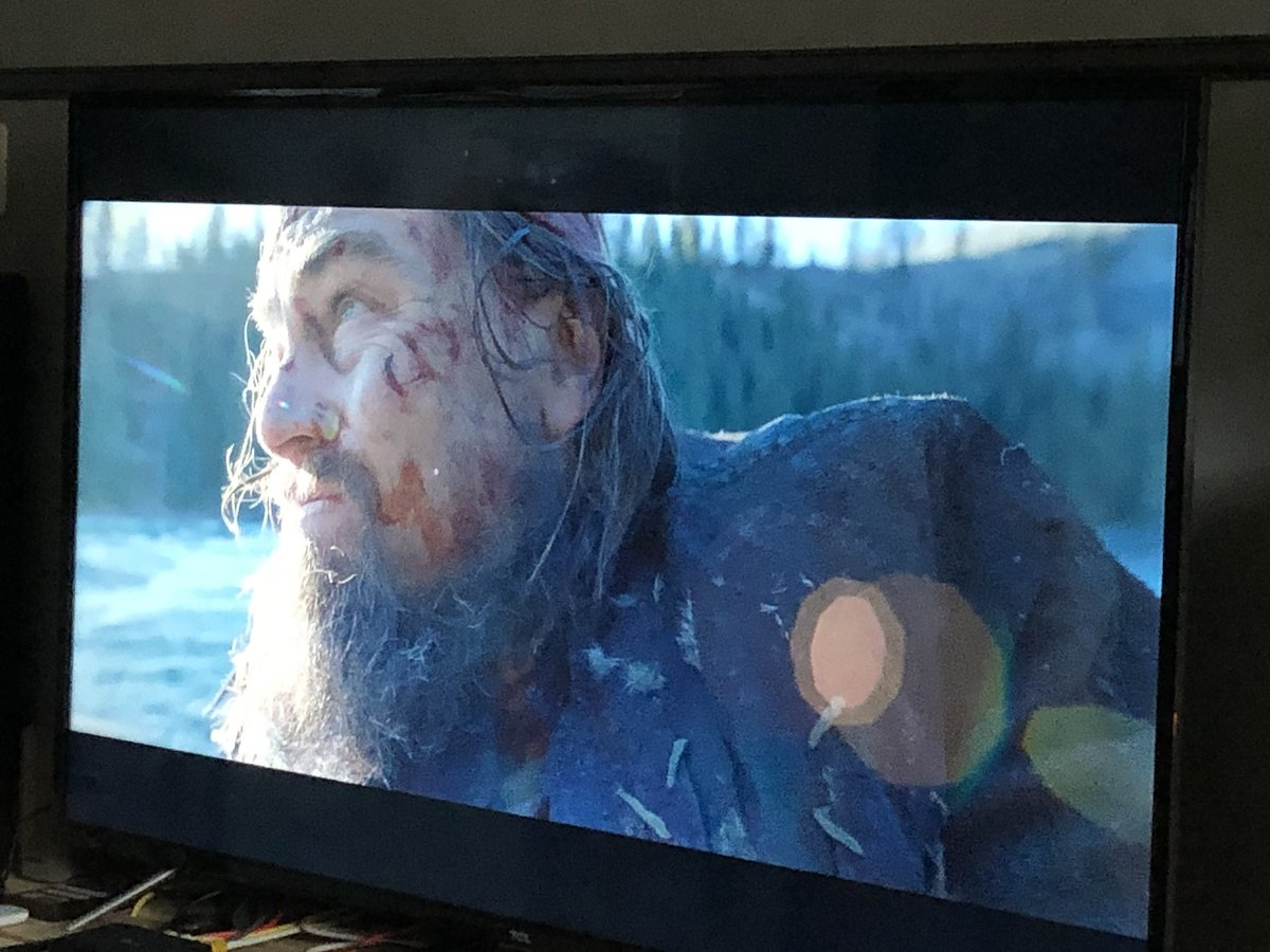 #TheRevenant has some of the best cinematography I've seen in a while. What a movie!