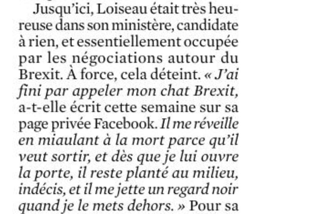 Why Nathalie Loiseau, France's Europe minister, now calls her cat Brexit. From today's Journal du Dimanche. <br>http://pic.twitter.com/ZyFmWQmfkX