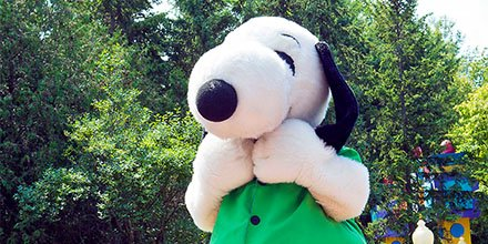 No pinches for Snoopy!  🍀 🍀 🍀 🍀  He's got his green on for #StPatricksDay! 😉