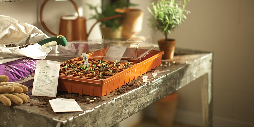 Give your garden a fighting chance by building a seed starting station. Click for materials and step-by-step instructions. https://thd.co/2Nujqv8