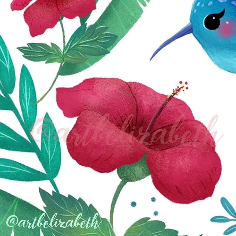 Colibri Hashtag On Twitter