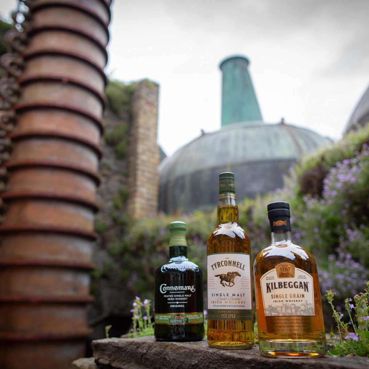 Here's to a sweetheart, a bottle (or three), and a friend. The first beautiful, the second full, the last ever faithful. #WeAreKilbeggan #KilbegganWhiskey #StPatricksDay https://t.co/pQAP0brPF4