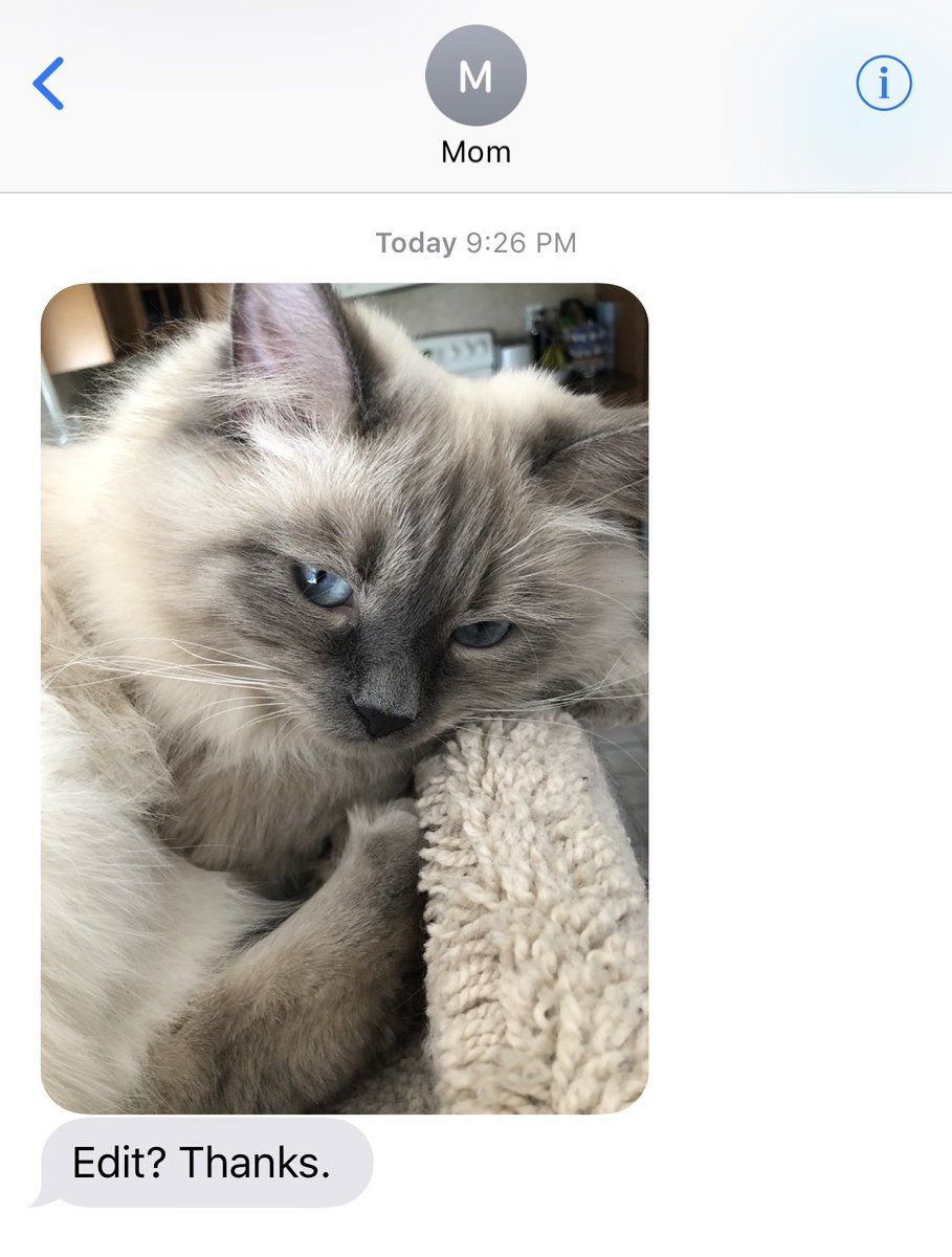 My mom now texts me exclusively to edit photos of her cat in lightroom so she can post them on his Instagram