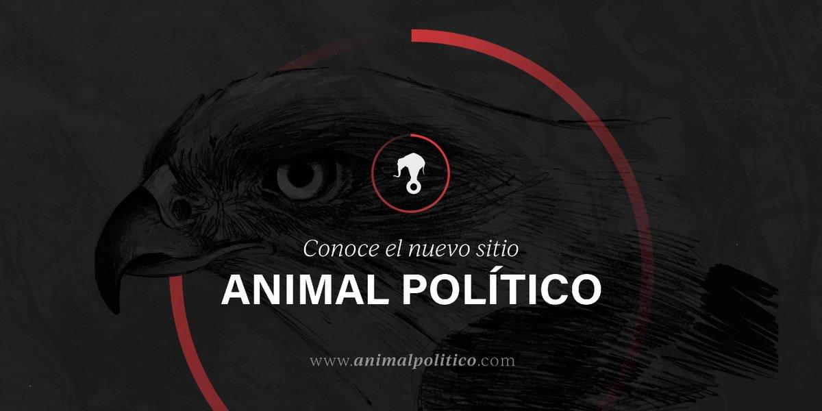 Hoy estrenamos: http://www.animalpolitico.com