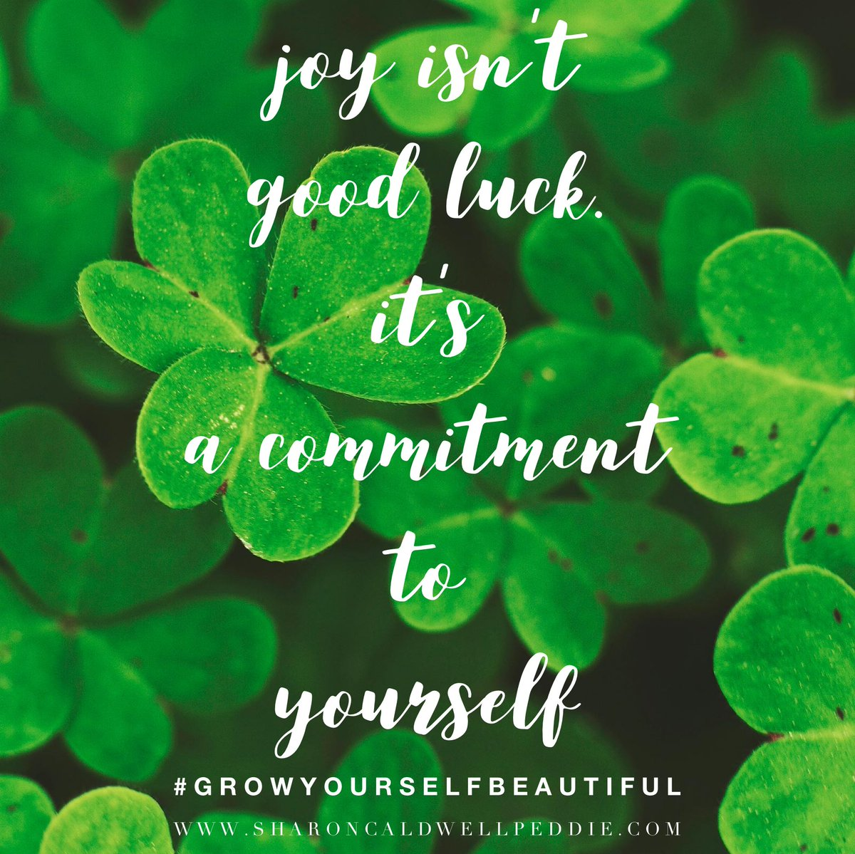 #mindfulmonday  Make beautiful commitments to yourself and your growth💚 #growyourselfbeautiful💕💗 #selfcare #selflove #joy #mindfulness #gratitude #mondaymotivation #behappy #loveyourself #teens #youngwomen #mentalhealth #selfesteem http://www.sharoncaldwellpeddie.com