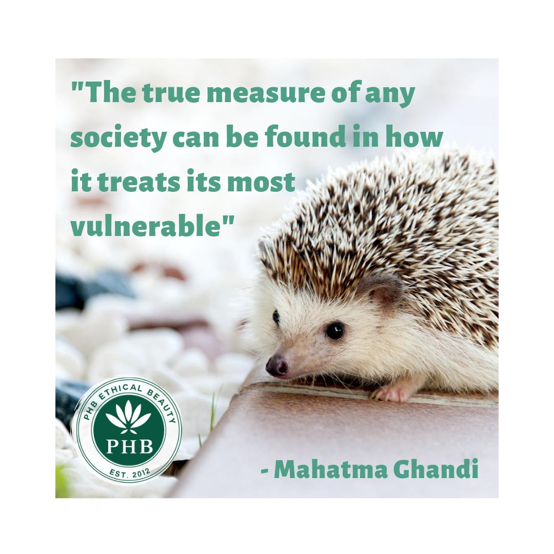We love this quote - so much #truth!      #crueltyfree #compassionate #animalrights #veganbeauty <br>http://pic.twitter.com/nRGuQNQCh1