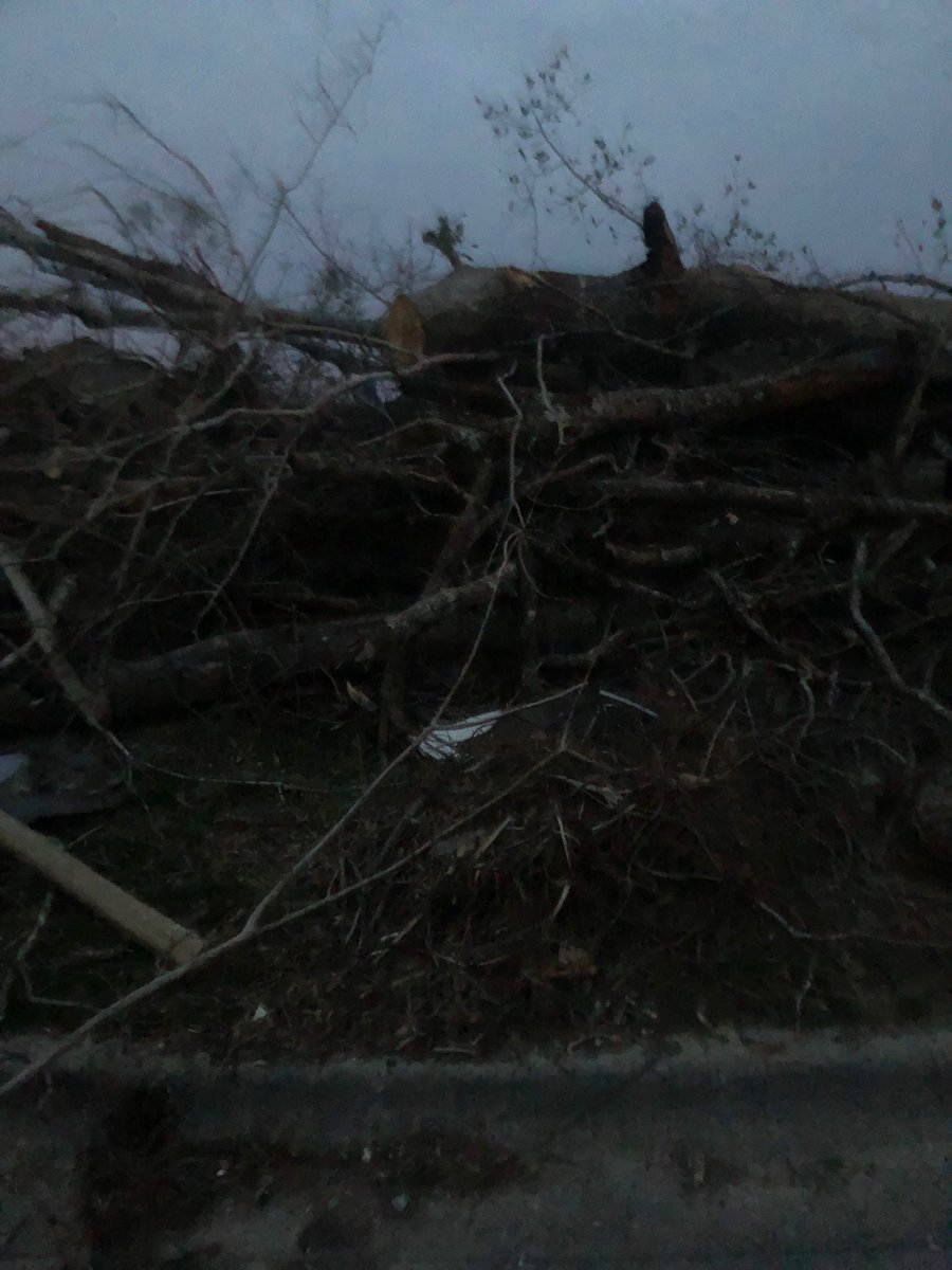 Almost 6 months after the Hurricane. This is still our daily view. This is about 7-8 feet tall. Once picked up it will be replaced with another just like it. #HurricaneMichael <br>http://pic.twitter.com/QRqZcGDsQO