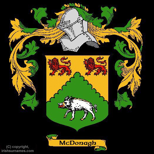 My original Irish name and family crest would love to get this tattooed soon when my sleeve is done 🍀