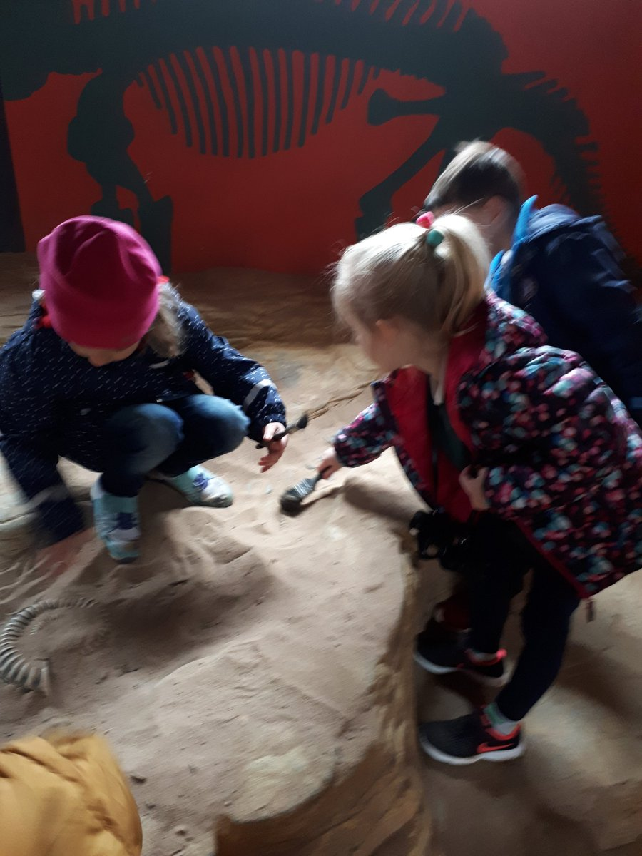Digging for fossils! @Birdland_