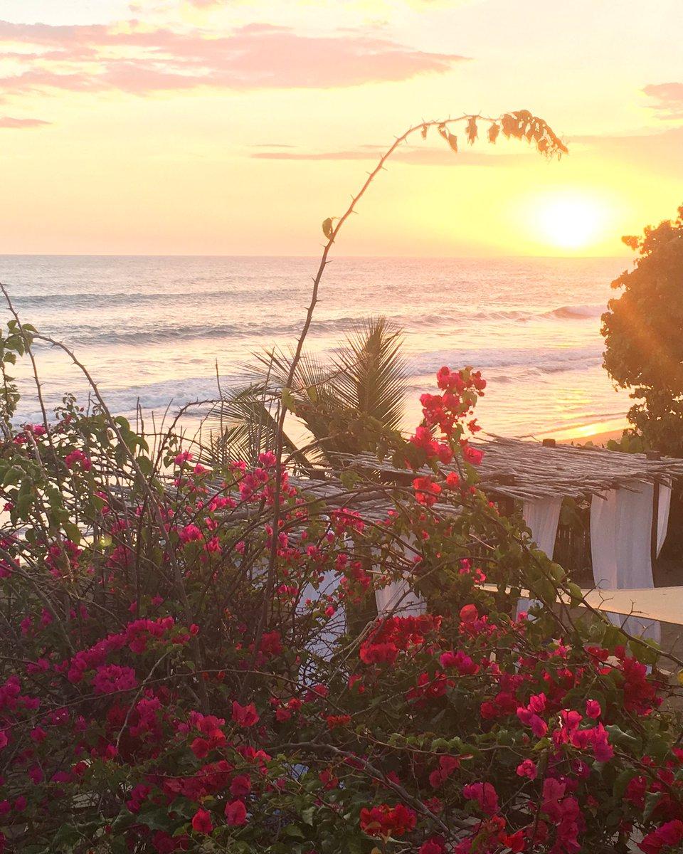 Just a little taste of heaven   #TreasureBeach #Jamaica #MotivationalMonday #tripadvisor #TravelTuesday #travelblogger<br>http://pic.twitter.com/9m6K2ooii9