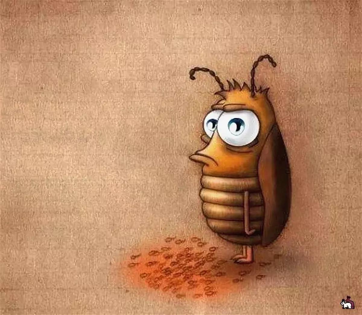 каждый прикольные картинки таракан научитесь делать красивое