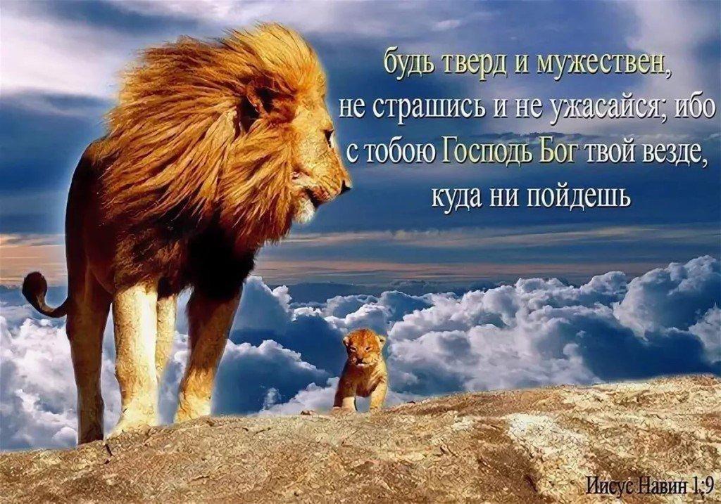 Открытки ободрения от бога