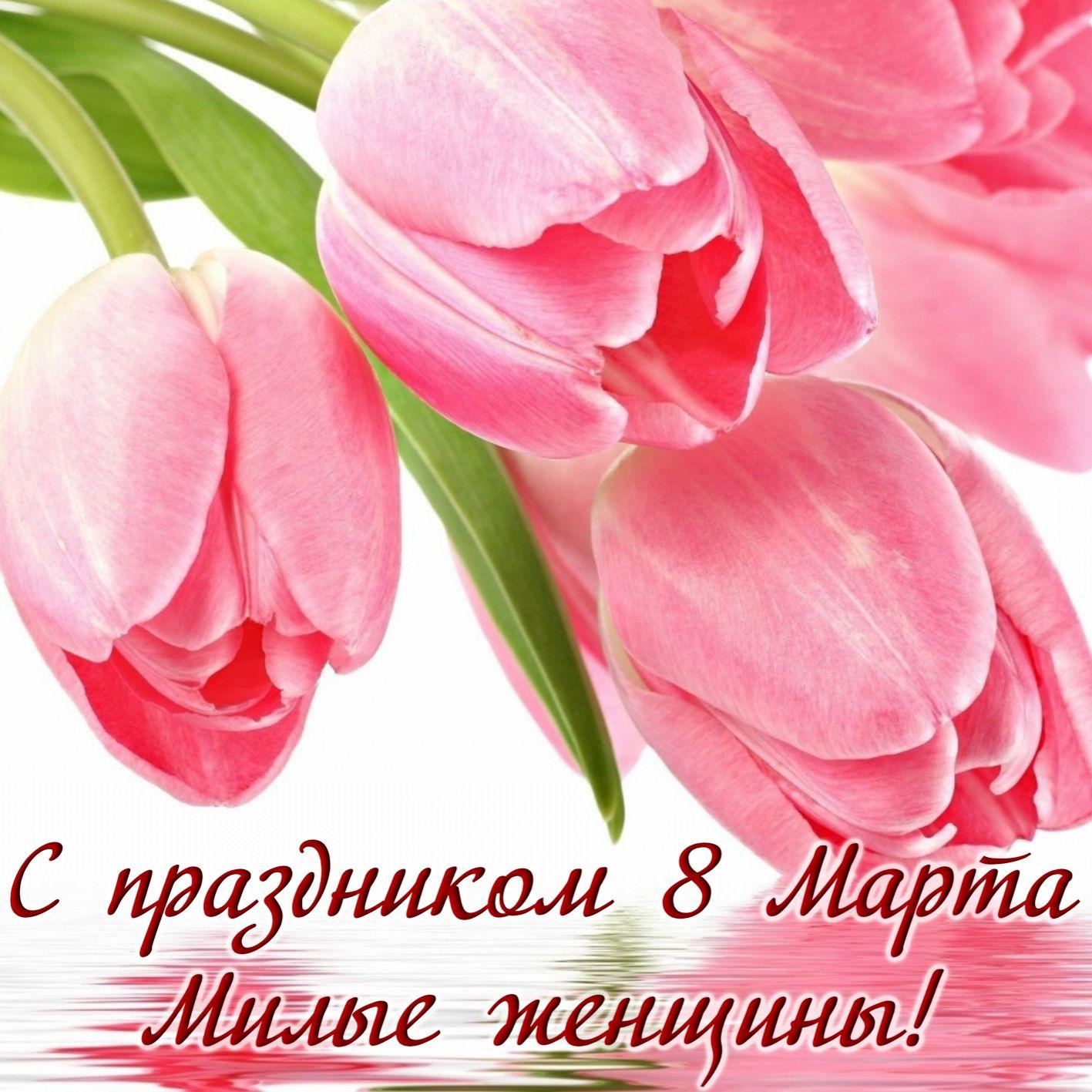 Поздравить с днем 8 марта открыткой, картинка