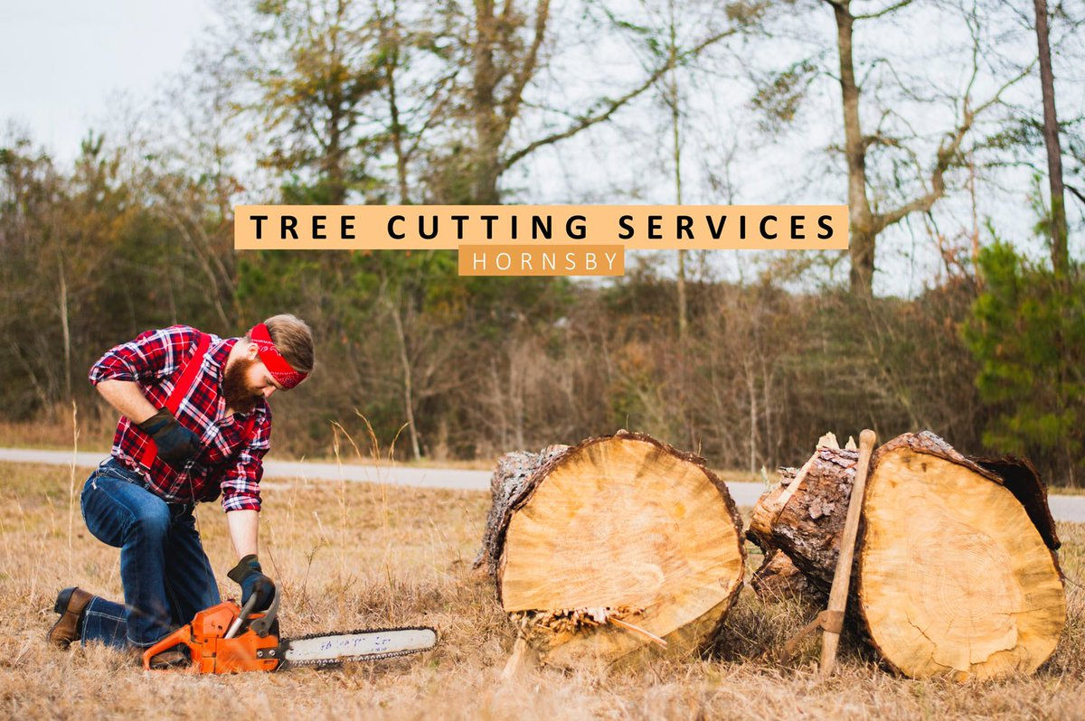 Talltimberstreesvc On Twitter See How Can Tree Cutting Services And Tree Lopping Can Do And How It Can Benefit You Read The Full Article Here Https T Co Xiy3akvvgs Tttsvc Thursday Pruning Removals Https T Co Kvkzcxcilk