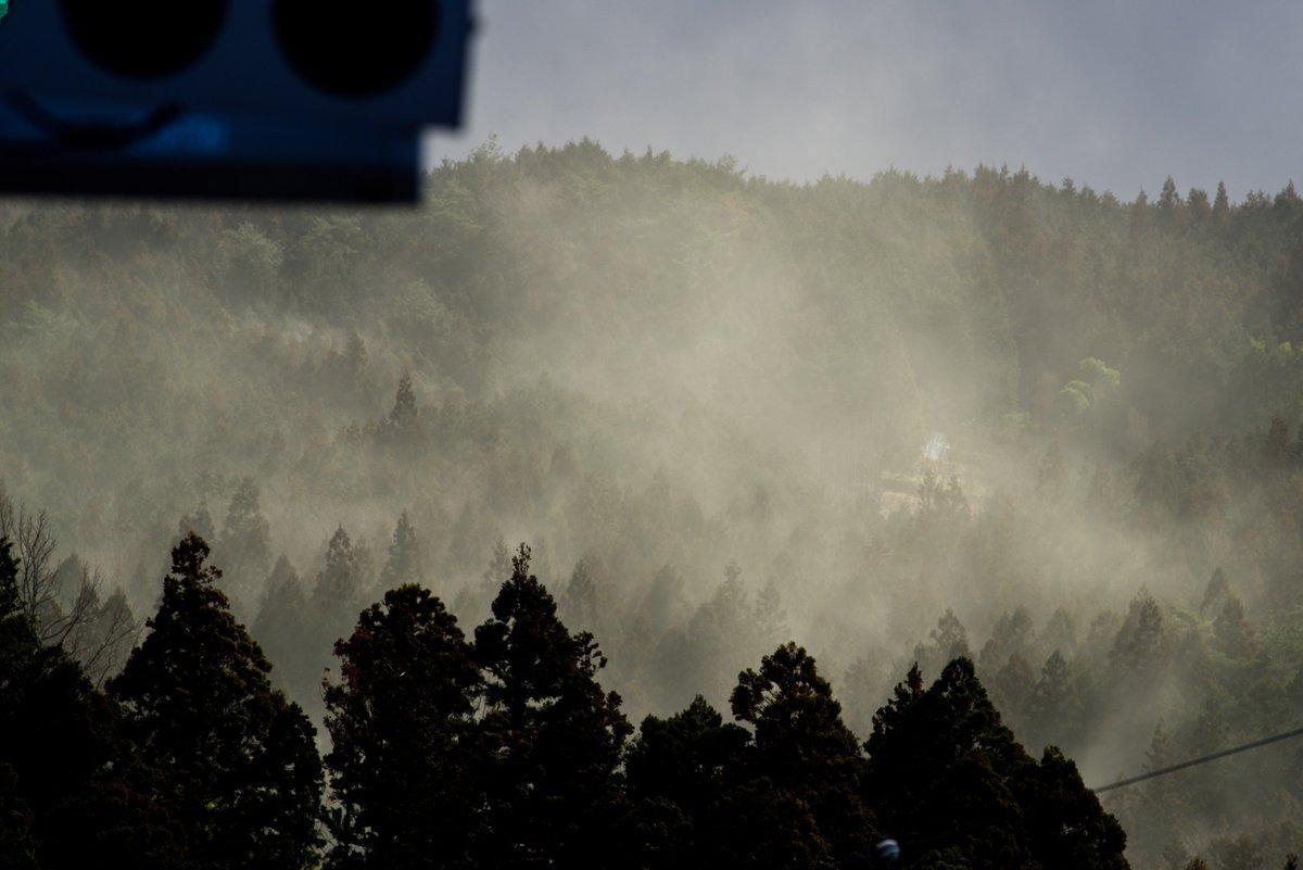 木曽から帰る時に見た光景 ガスじゃない 水蒸気でもない 野焼きでもない  コレ全部、杉花粉だ!!!