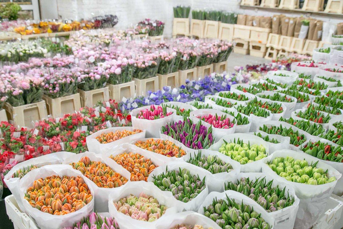 Свадебный, самая большая оптовая база цветов в москве