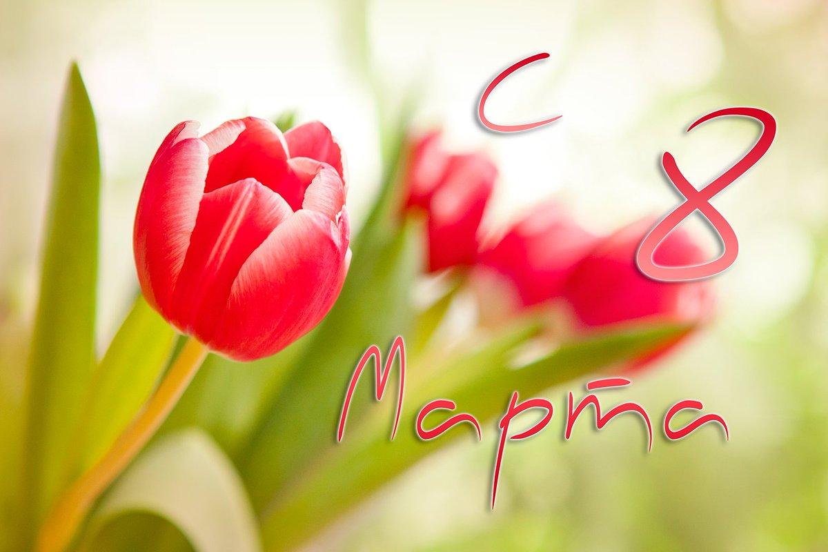 Поздравление с днем 8 марта от женщины женщине