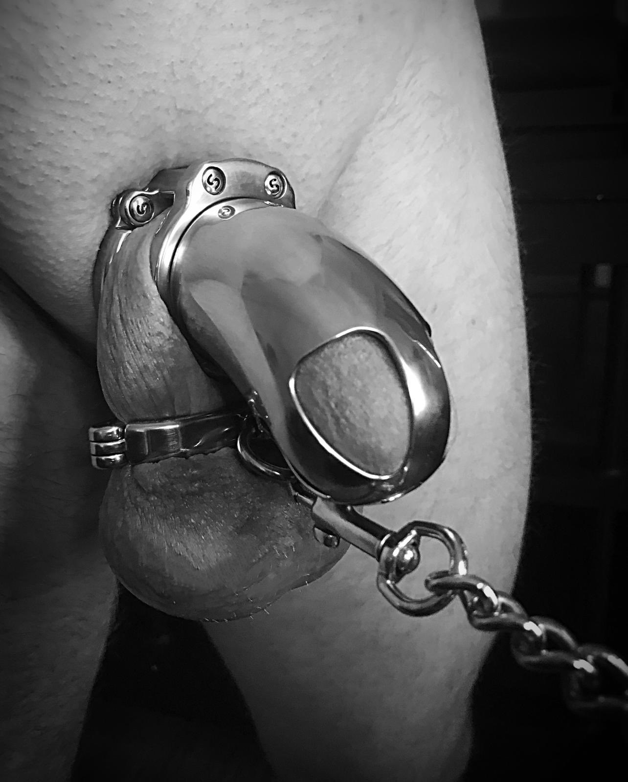 MALE CHASTITY & FEMDOM STORIES