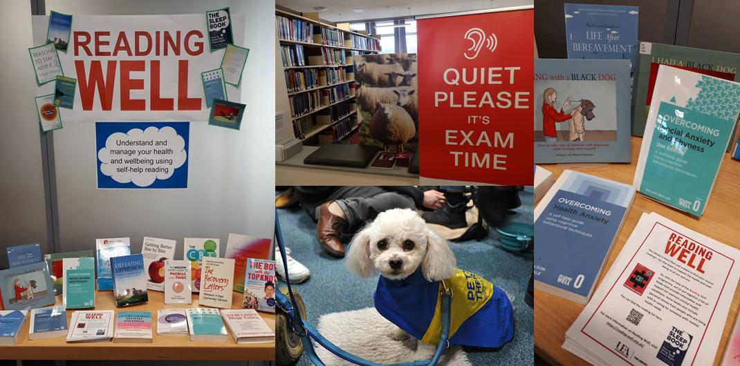 Image result for dogs in library uea