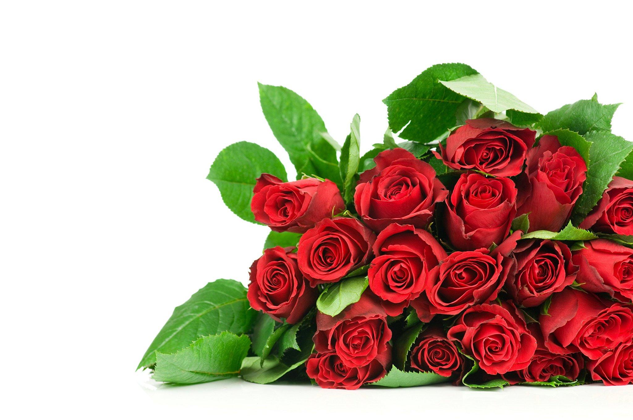 Открытки поздравит.розы, надписи для