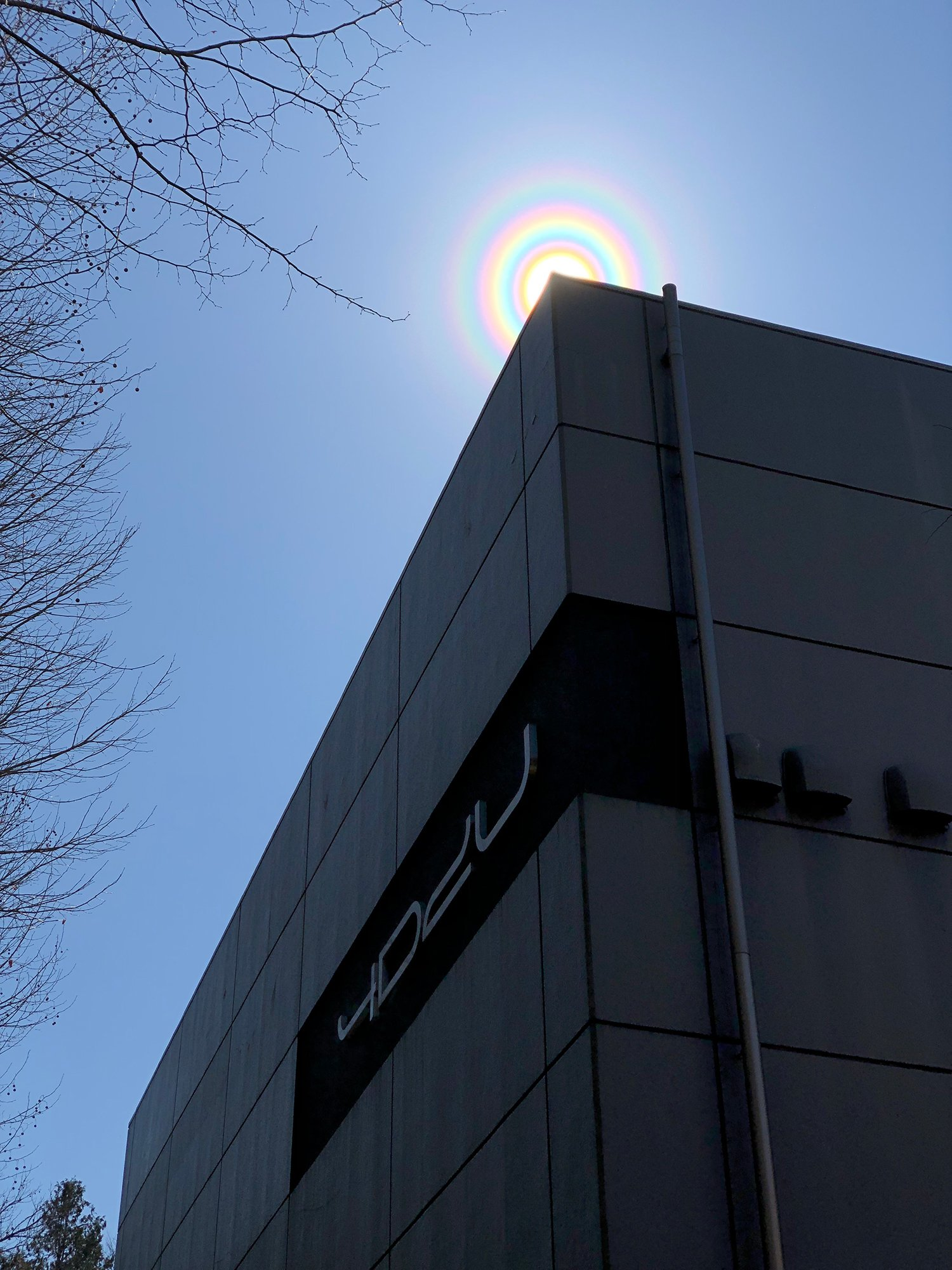太陽の周りに #花粉光環 と思われる光りの輪が出現。#国立天文台 三鷹キャンパスの建物(4D2Uドームシアター、歴史館、太陽塔望遠鏡)とともに撮影しました。花粉光環はスギ花粉が大量に飛散しているときに見られるとのこと。花粉症の方はお気をつけください。太陽を直接肉眼で見ないようにご注意を。