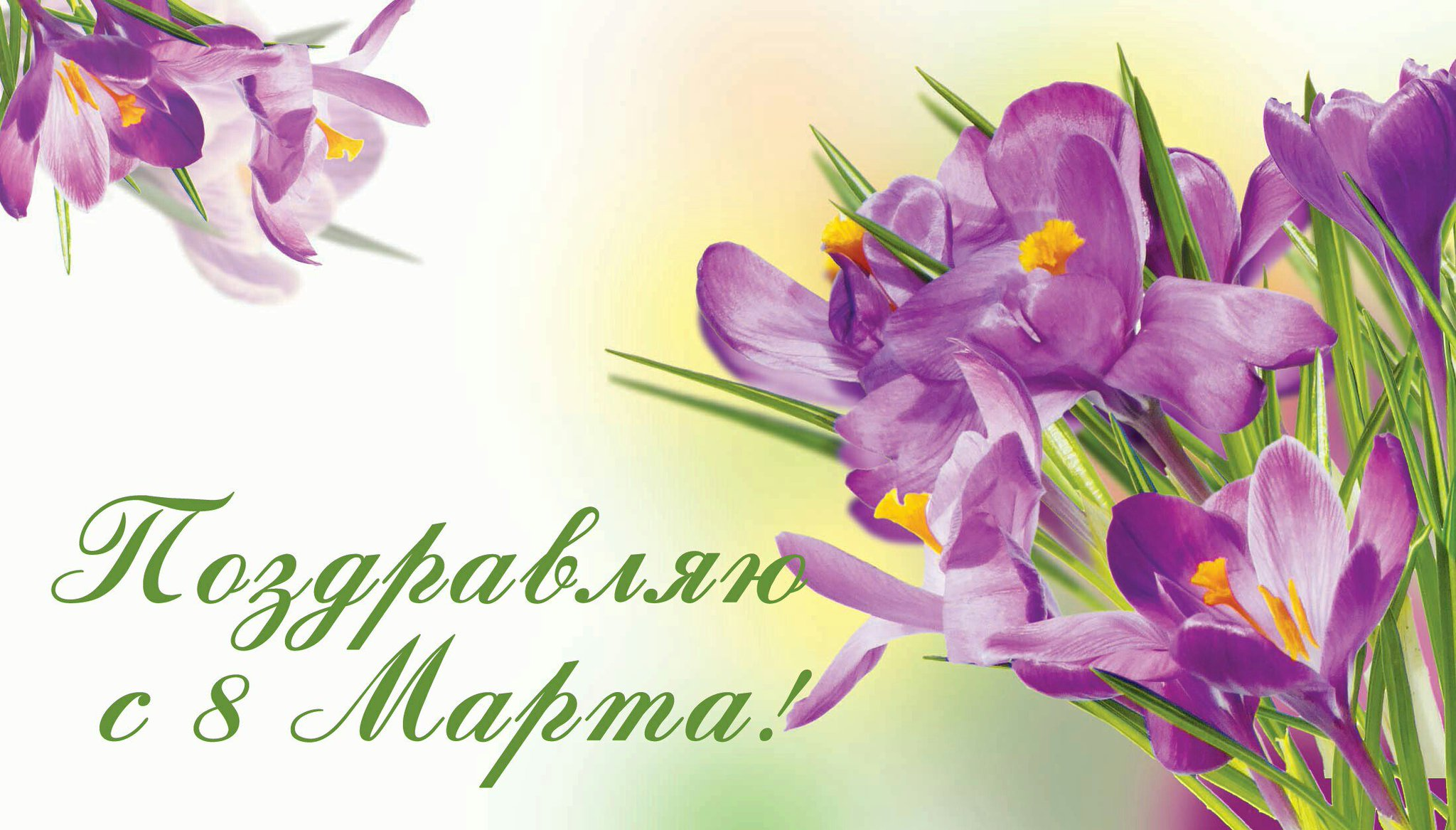 Фото открытка на восьмое марта, розы