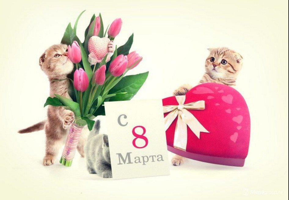 Стильные открытка с 8 марта