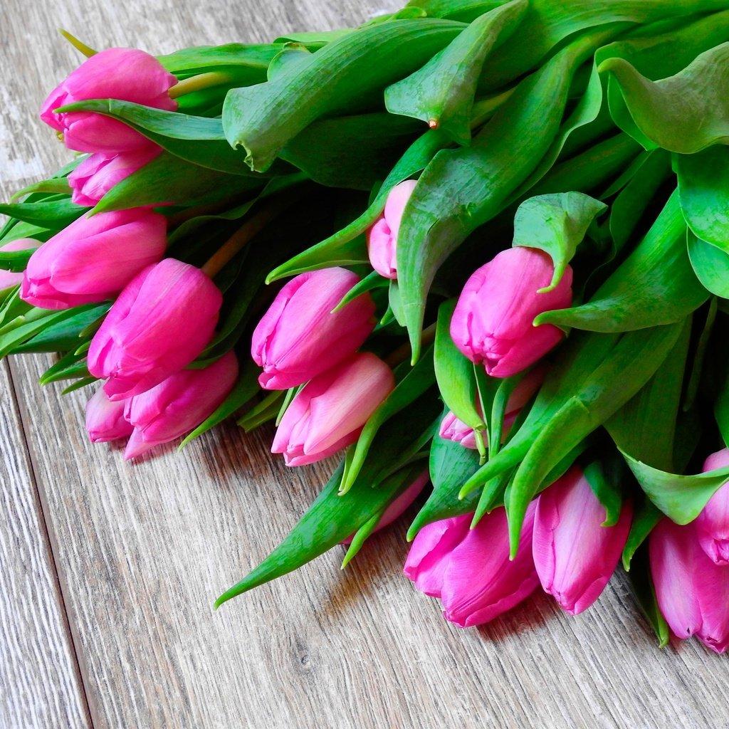 Видео поздравление с тюльпанами, любимой