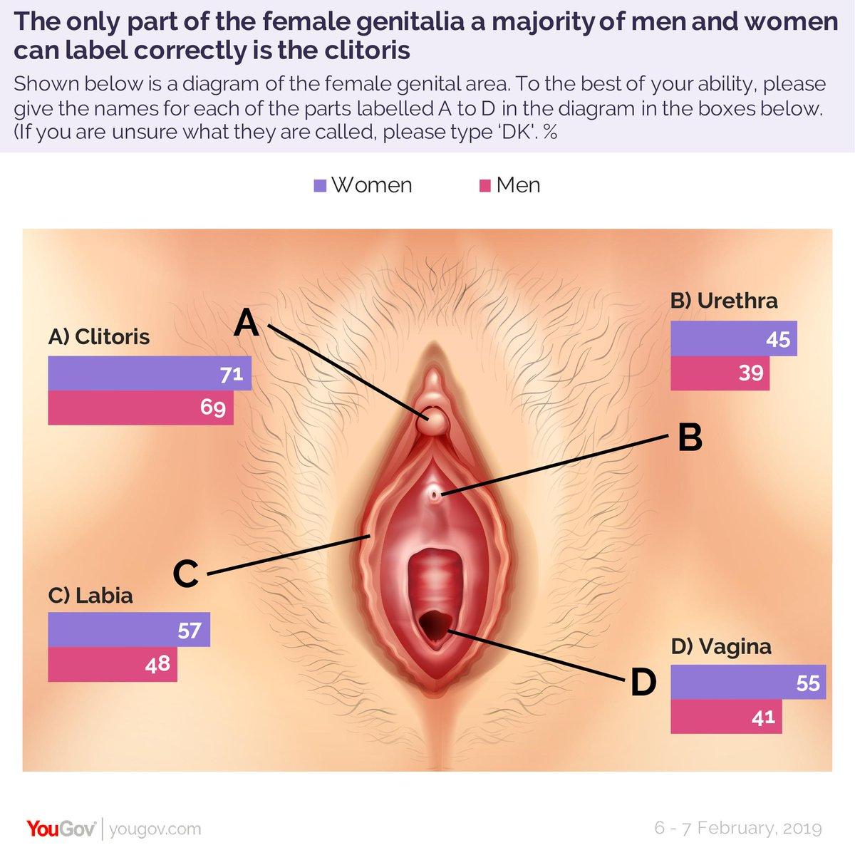 Pbs penis inside a vagina