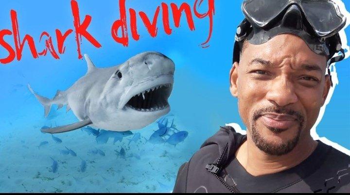TAVEUNI's photo on Sharks