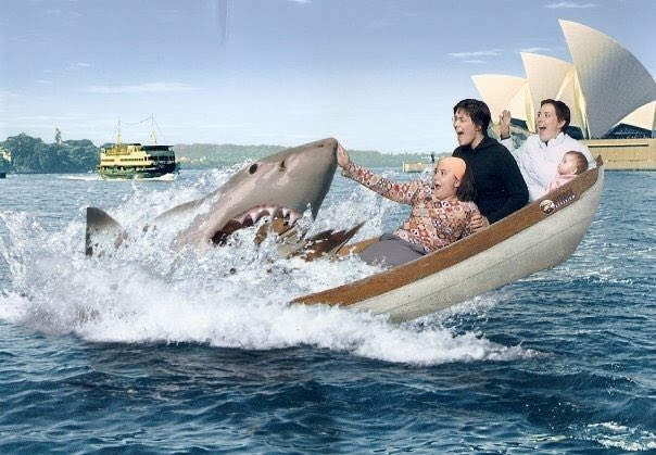 Blanca Sainz-Garcia's photo on Sharks