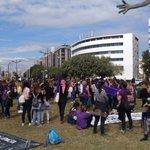 Image for the Tweet beginning: Foto #València #VagaFeministPodeu seguir el
