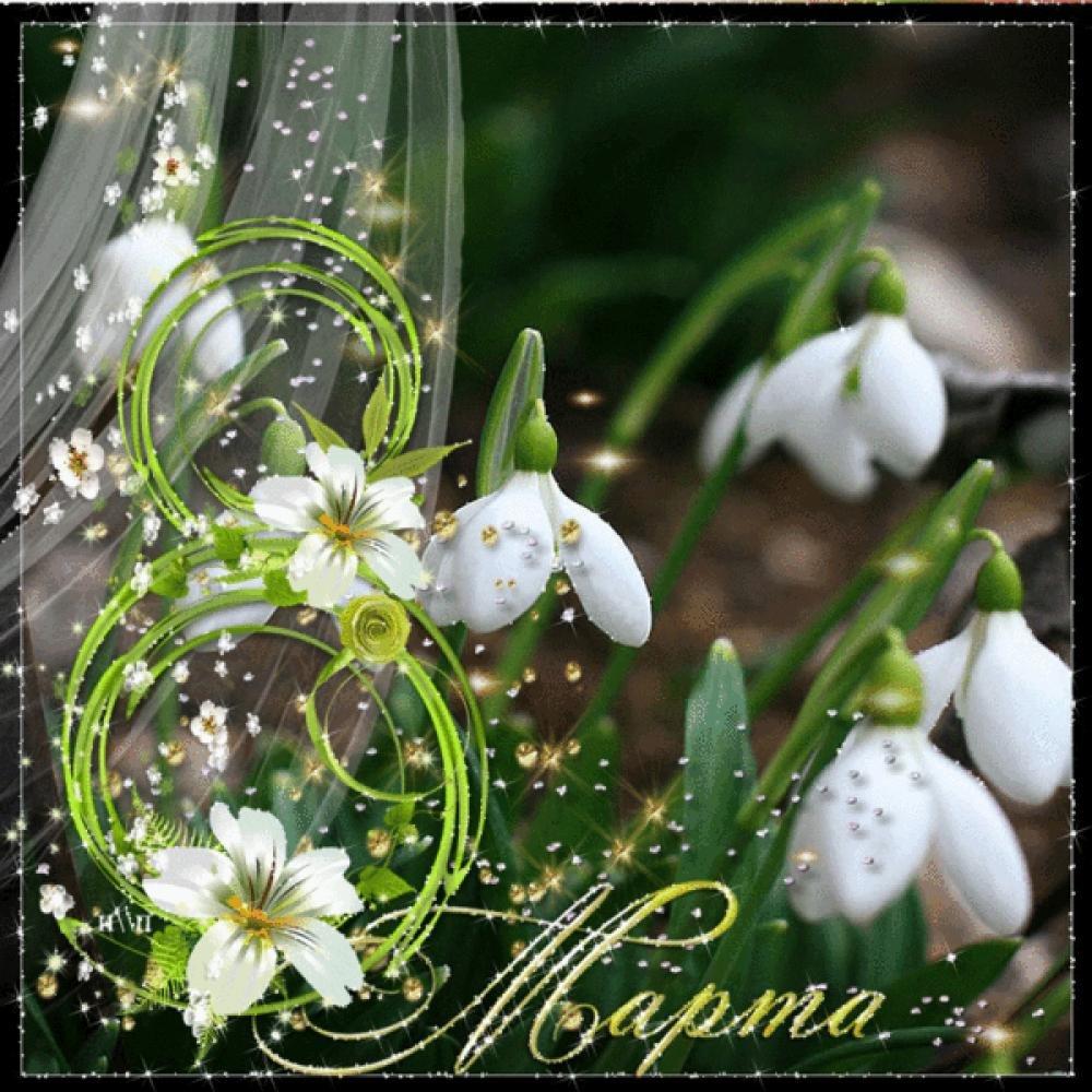 Красивая открытка с праздником весны, открытки