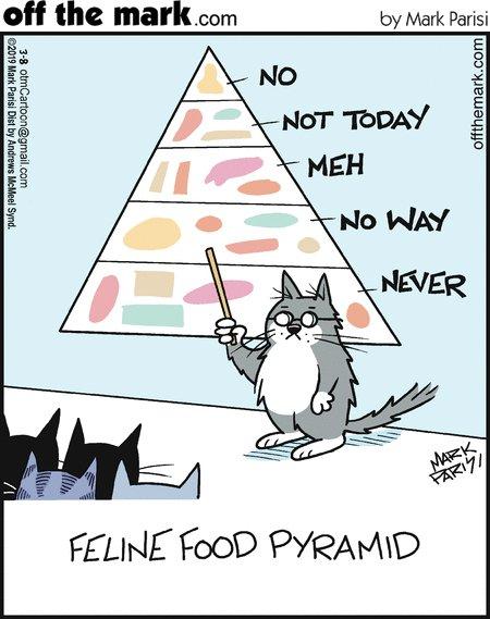 RT @OffTheMarkComic: What else ya got? #cat #cats #CatsOfTwitter #FridayThoughts https://t.co/0AUPmUzNxL