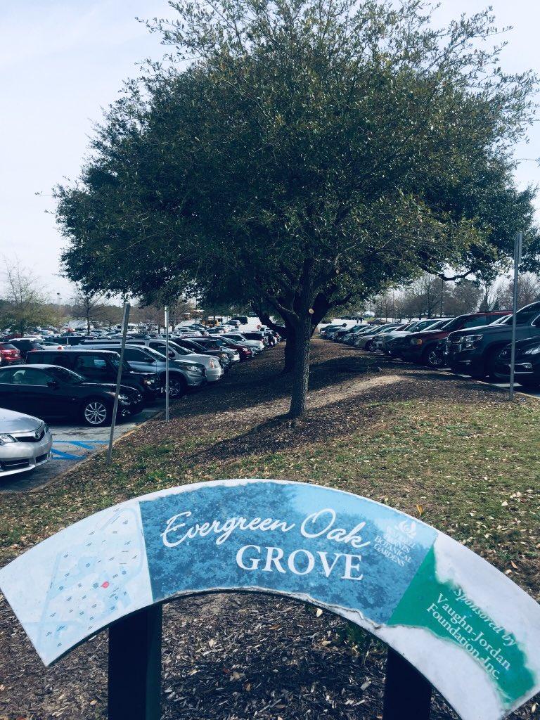 Oak Grove ECS (@OakGroveECS) | Twitter