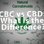 CBC is one cannabinoid responsible for the anti-inflammatory, antifungal, and antibacterial properties of hemp. Some researchers even suggest CBC may have the potential to fight cancer!  #CountryVitamins #Hemp #Phytocannabinoids #CBD #CBC #Cannabis #AgriculturalHemp #Healing
